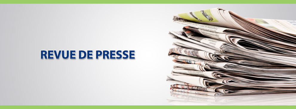 Web_LD_slides_revue_presse